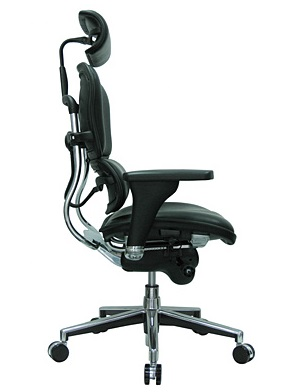 Common Sense Office Furniture carried a large number of executive chairs from different manufacturers, like Eurotech or JSI.