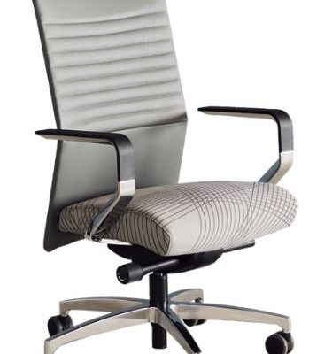 Common Sense Office Furniture carried a large number of executive chairs from different manufacturers, like Via Proform or JSI.