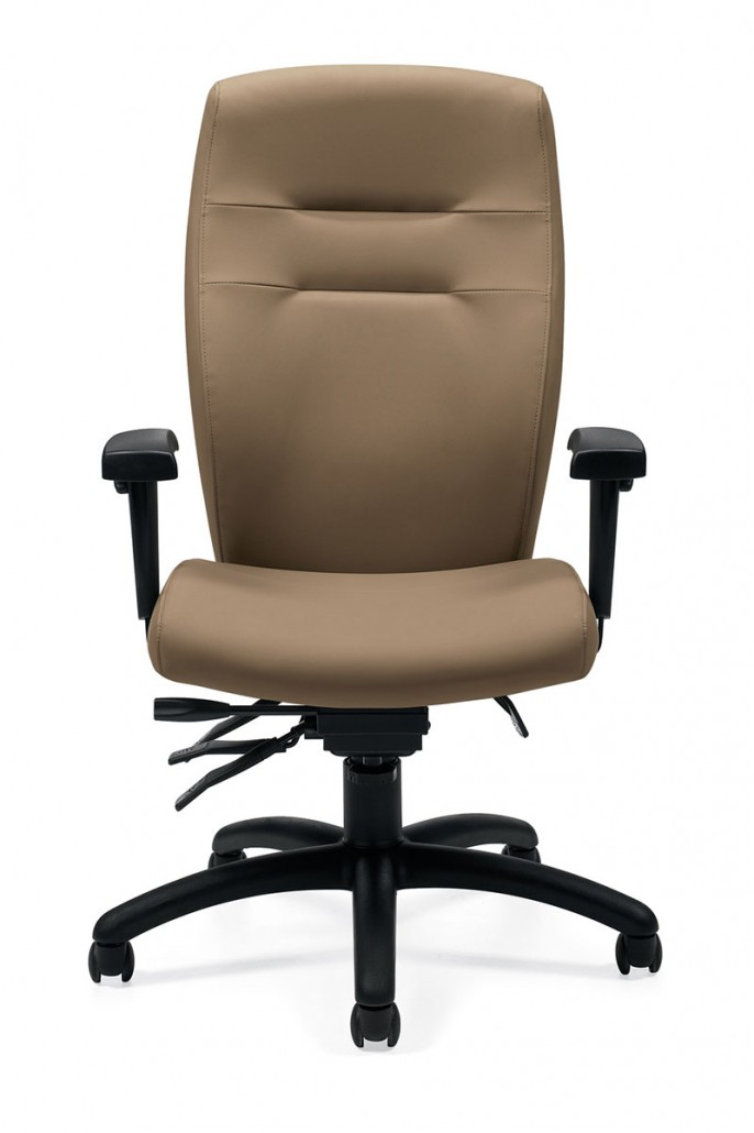 Common Sense Office Furniture carried a large number of executive chairs from different manufacturers, like SitOnit or Global.