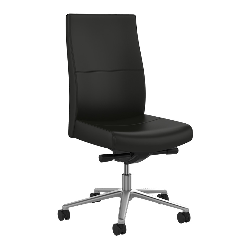 Common Sense Office Furniture carried a large number of executive chairs from different manufacturers, like SitOnit or JSI.
