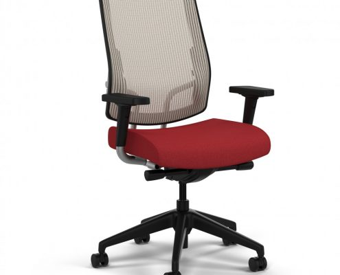 Common Sense Office Furniture carried a large number of executive chairs from different manufacturers, from SitOnIt to JSI.